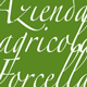 Azienda Agricola Forcella Logo