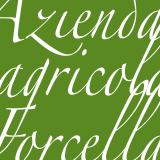 Azienda Agricola Forcella Retina Logo